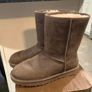 Womens chocolate leather uggs